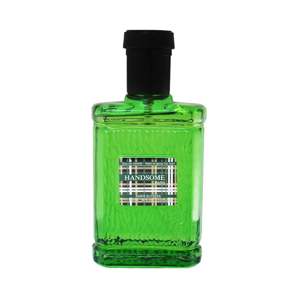 HANDSOME PARIS ELYSEES - PERFUME MASCULINO 100ML